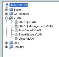 DGS-1100-24_VLAN